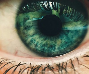 beautiful, eye, and green image
