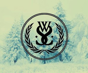 Logo, winter, and wss image