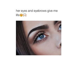 eyebrow, eyes, and face image
