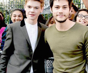 dylan o'brien, thomas sangster, and the maze runner image