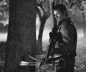 daryl dixon, the walking dead, and norman reedus image