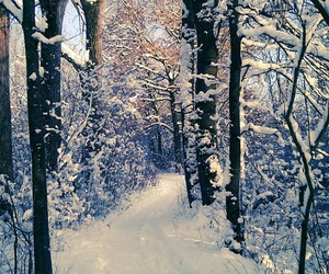 cold, snow, and trail image