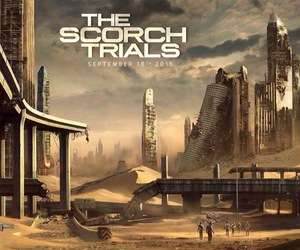 the maze runner, maze runner, and the scorch trials image
