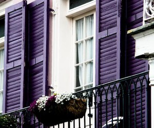 purple, balcony, and flowers image
