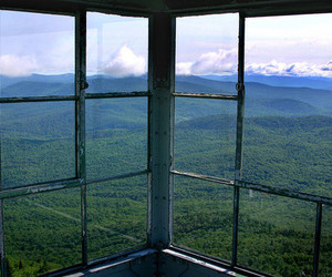 nature, window, and view image