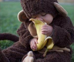 baby, monkey, and cute image