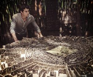 maze runner, dylan o'brien, and thomas image