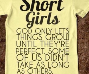perfection, true story, and short girl image