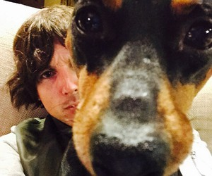 dog, bmth, and oli sykes image