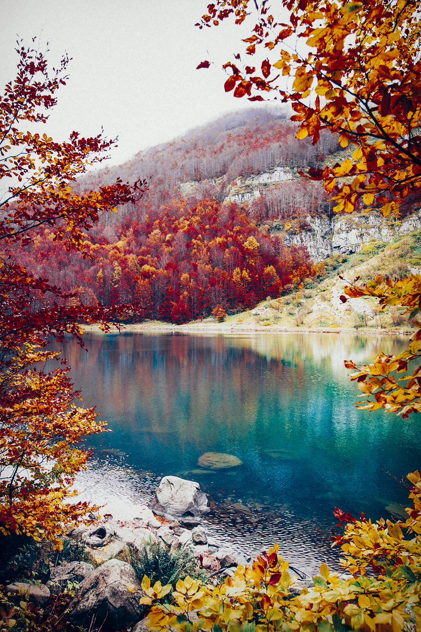 autumn, lake, and mystery image