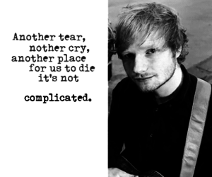 multiply, autumn leaves, and ed sheeran image