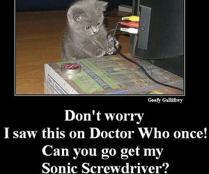 doctor, funny, and screwdriver image