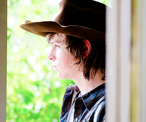 carl grimes, the walking dead, and chandler riggs image