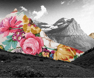 Collage, floral, and photo image