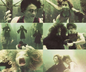 goblet of fire, harry potter, and hermione granger image
