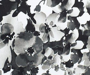 background, black and white, and flowers image