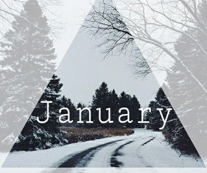 january, new year, and trees image