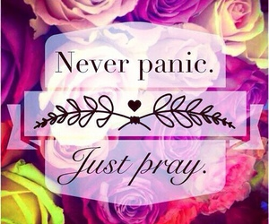 pray, panic, and flowers image
