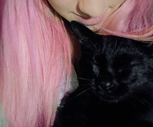 cat, lashes, and pink hair image