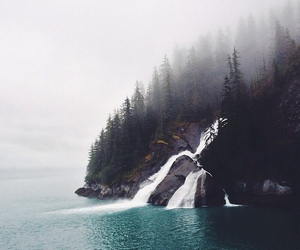 indie and nature image
