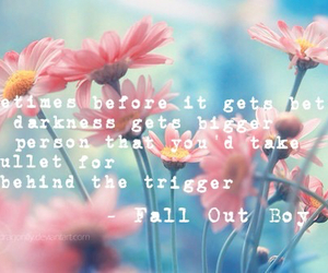 bands, fall out boy, and flowers image