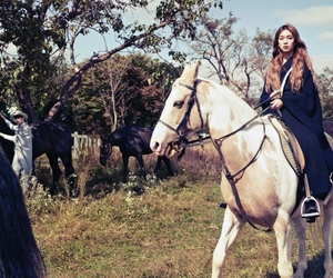 horse, riding, and vogue image