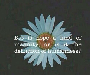 hope, insanity, and quote image
