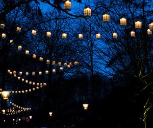 blue, lights, and night image