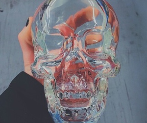 vodka, skull, and bottle image