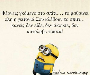 funny, true, and minions image