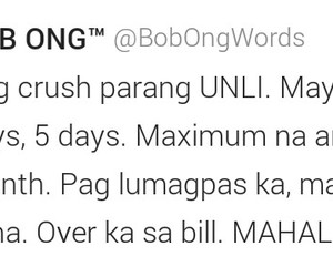 crush, mahal, and quote image