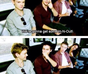 cast, will poulter, and the maze runner image