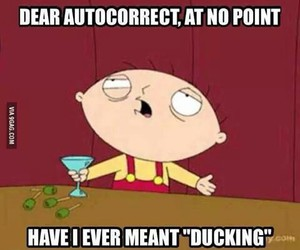 funny, lol, and autocorrect image