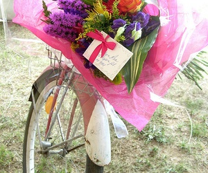 flowers, bicycle, and boho image