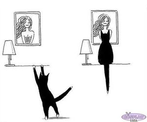 cat, dress, and black image