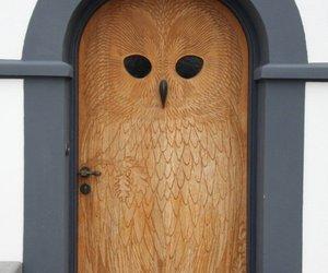 door, owl, and art image
