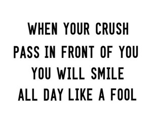 crush, fool, and smile image