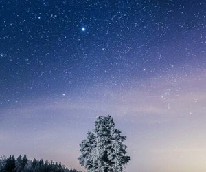 nature, night, and snow image