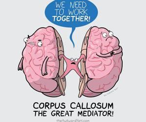 brain, cartoon, and pink image