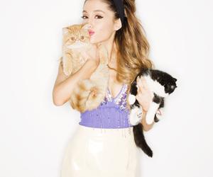 ariana grande, cat, and ariana image
