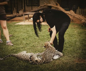 skrillex and zoo image