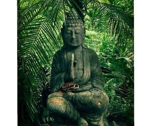 blog, Buddha, and fashion image