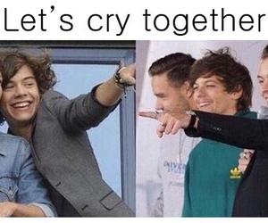 cry, direction, and one image