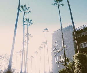 hipster, indie, and palmtree image