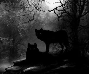 animals, inspiration, and dark art image