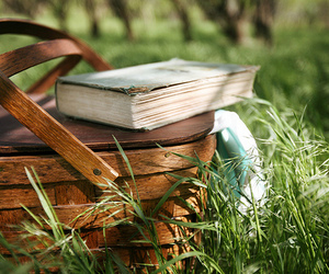 book, grass, and picnic image