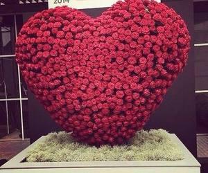 love, amazing, and beautiful image
