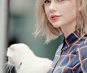 Taylor Swift and t-swizzle image