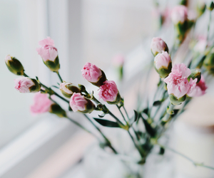 bedroom, flowers, and focus image