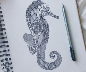 drawing, art, and seahorse image